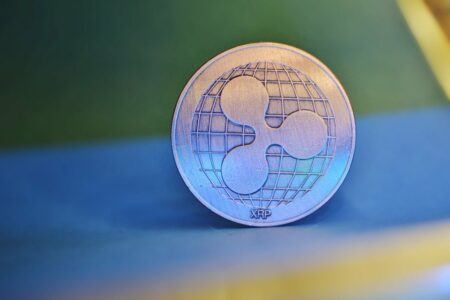 Crypto Analysts Bullish on XRP as Its Whale Number Hit New All-Time High